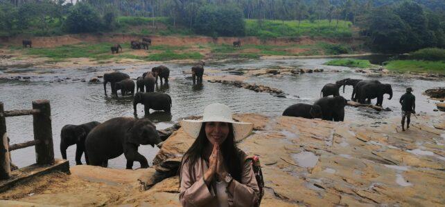 Viaje a Sri Lanka en Julio 2020 con Ana Francisca García Trelles