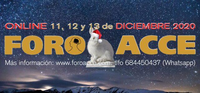 Foro Acce Online GRATUITO – 11, 12 y 13 de diciembre 2020